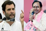 congress, madhya pradesh, assembly poll results trs leads in telangana congress in rajasthan, Bharat